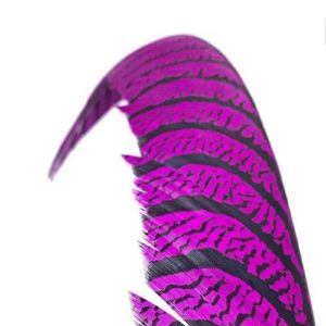 INDIVIDUALS FEATHERS