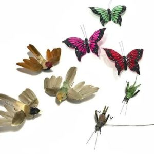 BUTTERFLIES, INSECTS AND BIRDS
